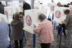 non-citizens voting in elections
